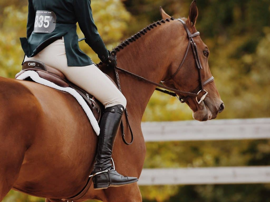 Beautiful brown horse and rider competing at an event with greenery and a white fence in the background
